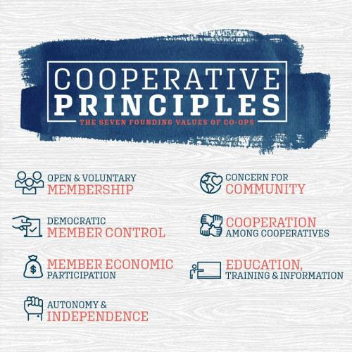 7 Co-op Principles